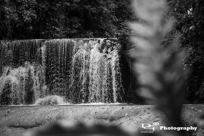 Black River Safari and YS Water Falls
