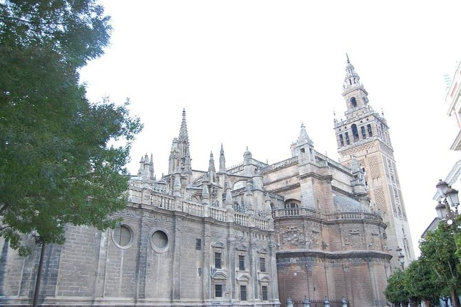 Highlights tour in Seville