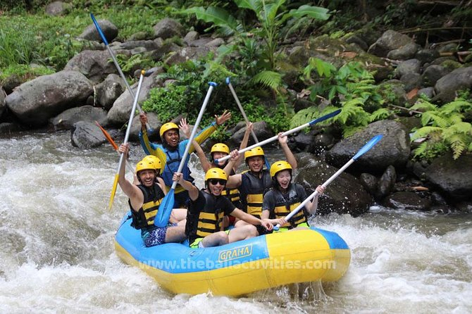 Bali Big Day Out: Ubud Tour + Rafting Adventures