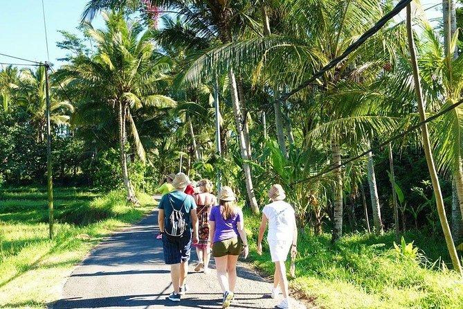 True Bali Experience - Village Trekking