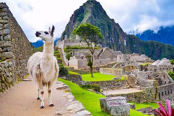 Tour Machu Picchu + Huaynapicchu Mountain | 2 Days From Cusco | photo 3