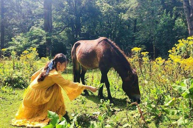 7 Days Hidden Land of Bhutan
