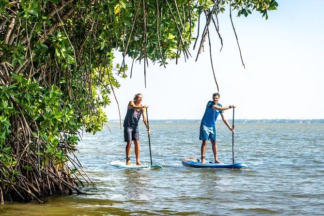 Stand Up Paddling Lagoon Tour in Hikkaduwa