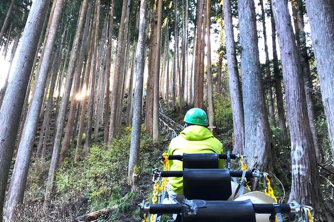 One Day Tour of Tokyo's Plentiful Nature in Hinohara Village