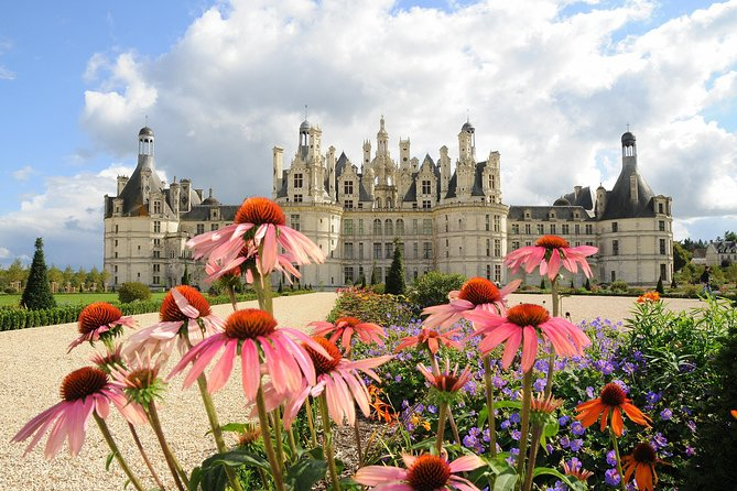 Day tour of Chateaux of Chambord, Blois, Cheverny & family organic winery