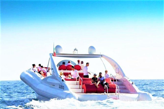 Luxury Opera 60 Whale & Dolphin Watching Experience
