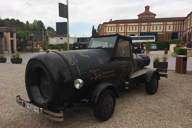 Wine tour - Penedes wine region - (2 wineries included)