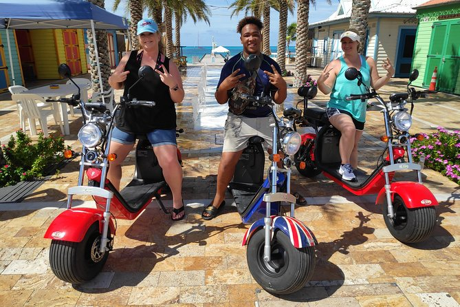 Electric Harley-scooters and Parrot Ville Combo Tour photo 1