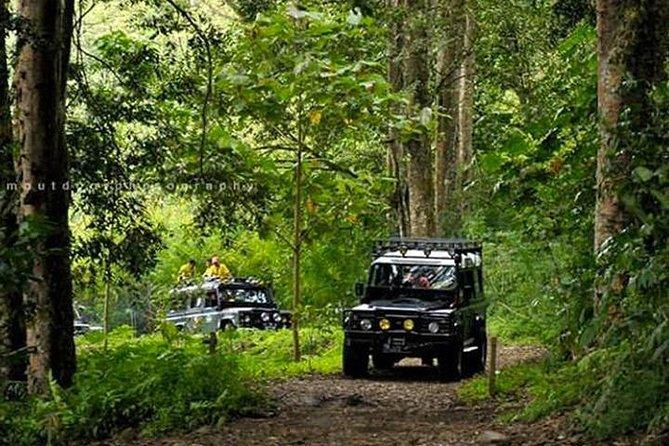 Bali Land Rover Safari & Jungle / Volcano
