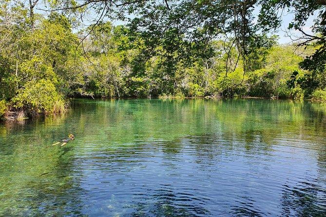Skip the Line:Recanto Ecologico Rio da Prata Ticket including Trail & Snorkeling, Bonito, BRASIL