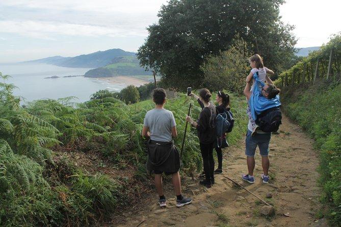 Hiking St James Way Between Vineyards and Winery Visit