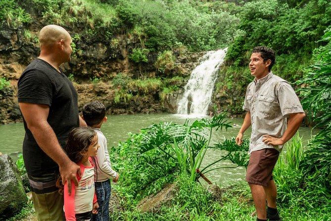 North Shore Waterfall & Adventure
