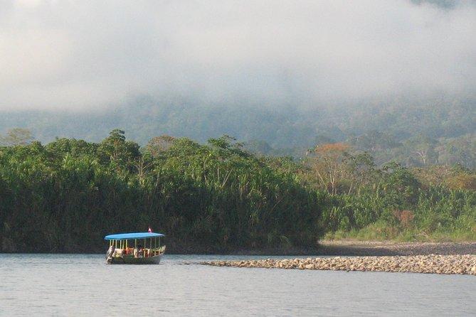 Excursions in the Manu- Peru National Park