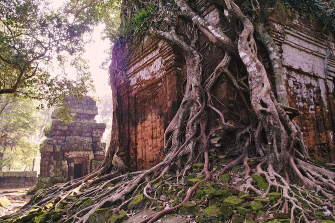 Private Tour to Beng Mealea and Koh Ker photo 8