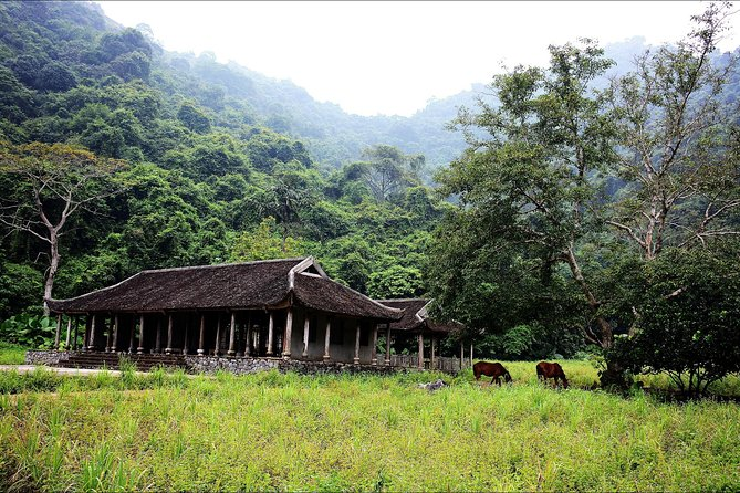 Full day hikking in Jungle of Cat Ba National park photo 1