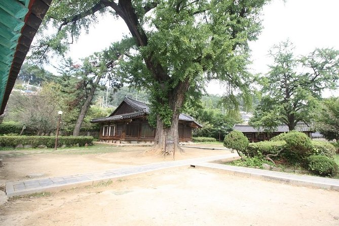 [Japanese only] Traditional market experience & Jeonju-Korean culture experience <Wed, Fri, Sun: Departure>