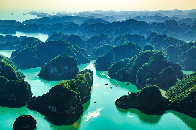 Sen Day Cruise -Luxury One Day Ha Long Bay