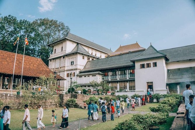 Kandy Sightseeing Day Tour from Negombo (All Inclusive) photo 4