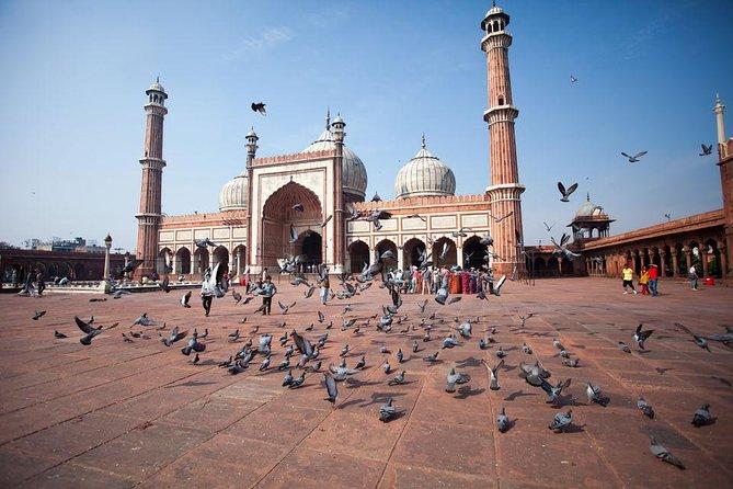 Private Delhi and Jaipur Tour from Delhi
