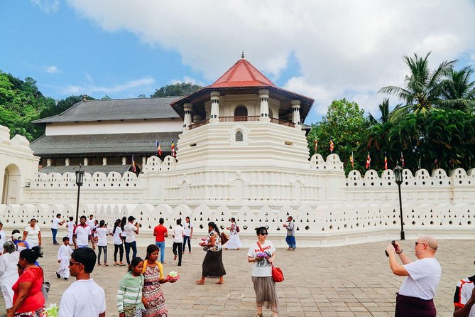 Kandy Sightseeing Day Tour from Negombo (All Inclusive) photo 9