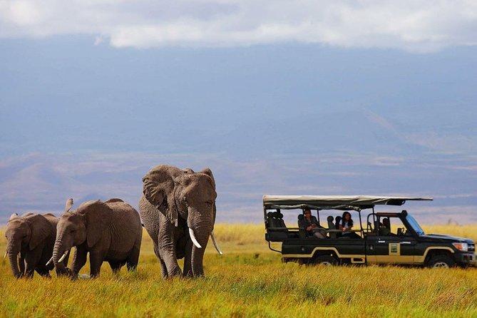 7 Days Samburu, Lake Naivasha & Masai Mara National Reserve
