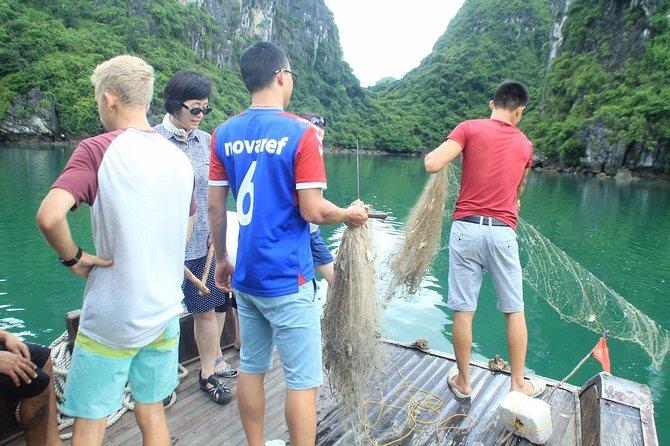 Lan Ha bay & Halong bay 2D/1N Cruise: Kayaking & swimming at the pristine places