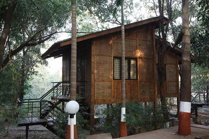 Tree-House Adventure in Palghar