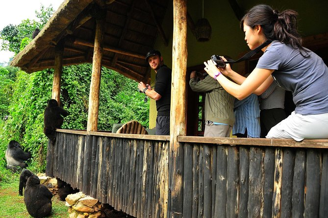 5 days Kigali, Kampala, Entebbe and Gorilla trekking Safari