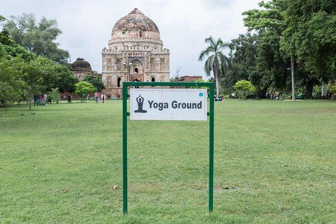 Yoga in the Famous Lodhi Garden, New Delhi