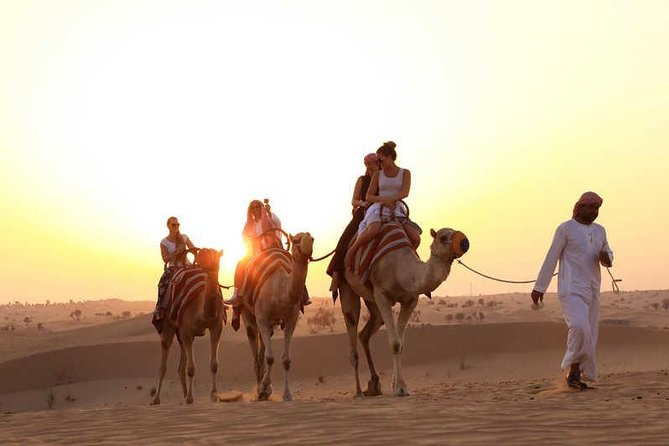 Sunset Camel Caravan Experience with BBQ Dinner Buffet photo 1