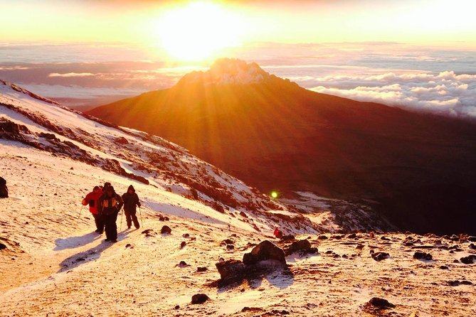 7 Days KILIMANJARO climbing via LEMOSHO ROUTE photo 4