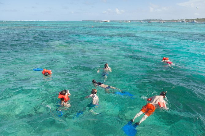 La Barcaza Private Lux Snorkelling Punta Cana photo 19