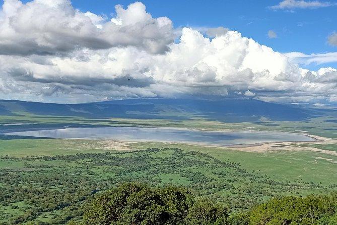 Ngorongoro Crater Full Day Tour From Arusha