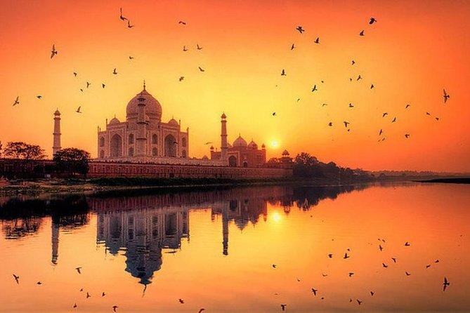 Private Sunrise Taj Mahal & Agra Fort Tour From Delhi