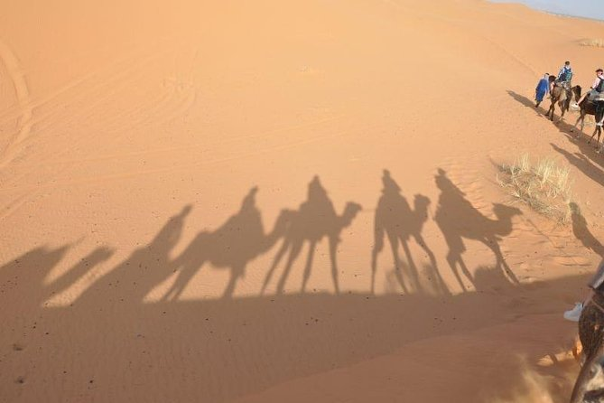 Fes to Fes 2 days via Merzouga desert tour