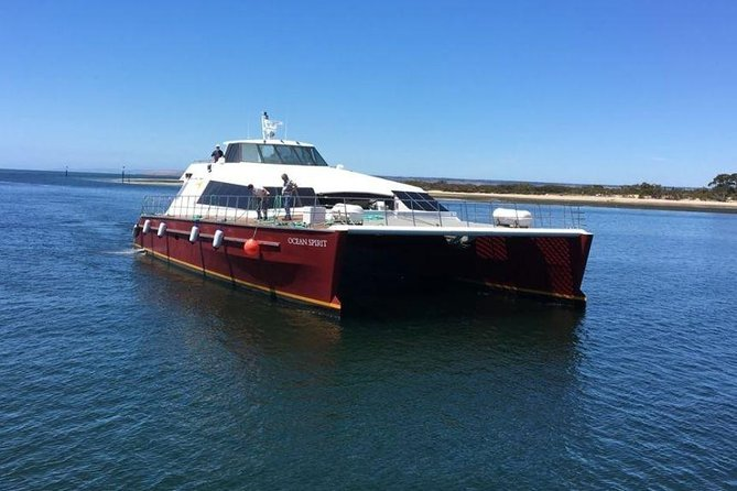 Ferry to Kangaroo Island: Cape Jervis to Penneshaw photo 1