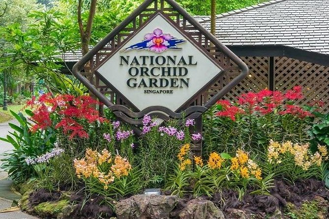 Skip the Line: National Orchid Garden Ticket