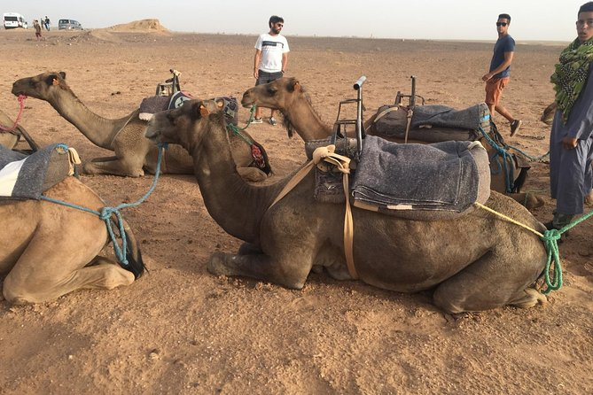 Marrakech to Zagora 2 Days Desert Tour