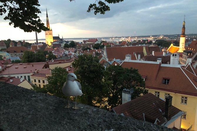 7 Days Small Group Tour: Estonia, Latvia, Lithuania, Belarus & Ukraine