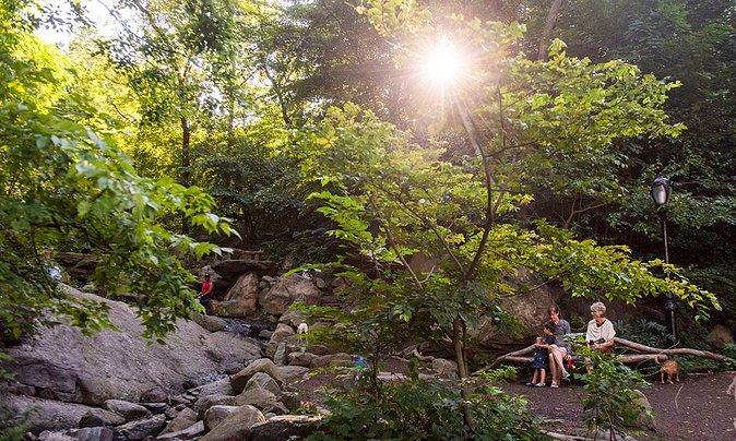 Top Parks and Gardens in New York City