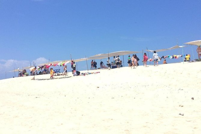 Boat tours,spice tour,city tour,dolphin tour,prison island,sand bank sea food