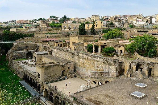 Visit half day to the herculaneum site (4hr)