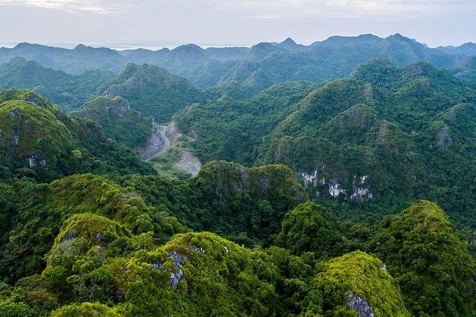 Full day hikking in Jungle of Cat Ba National park photo 11
