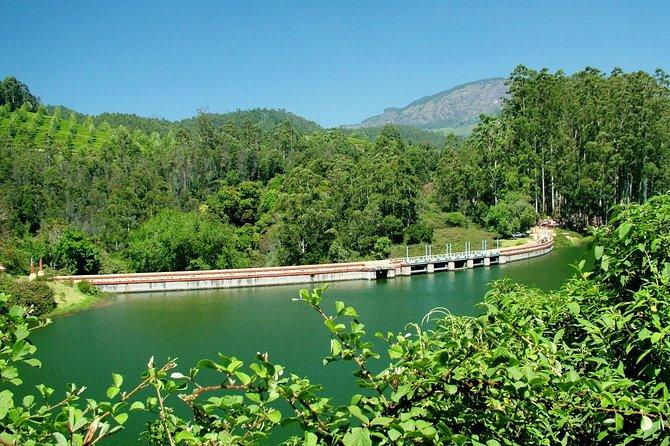 Munnar Site-seeing Tour