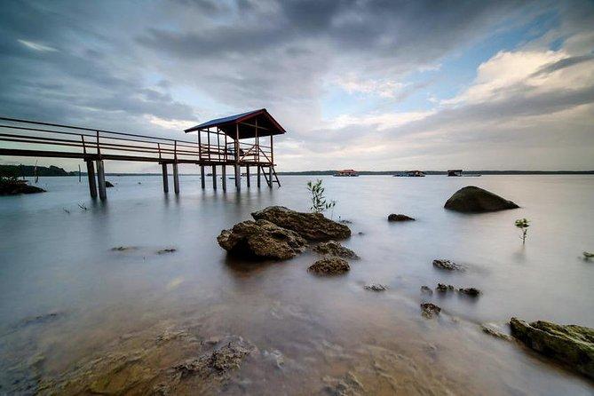 Johor Day Tour - Ostrich Farm, Beach, Waterfall, Fireflies [Car]