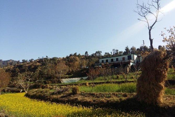 Ginger Valley Village Trek