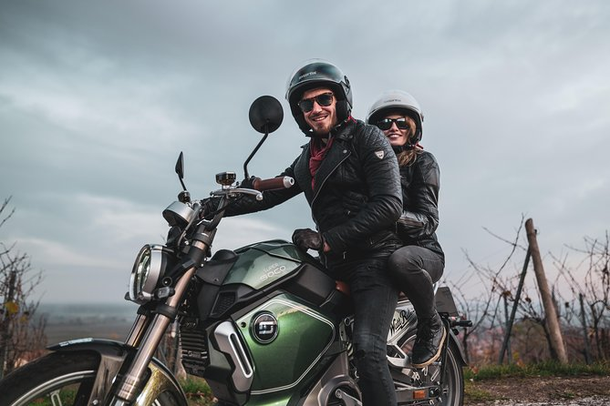 Half-Day Electric Motorcycle Rental from Selestat