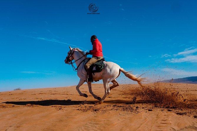 3 days desert tour and horseback riding