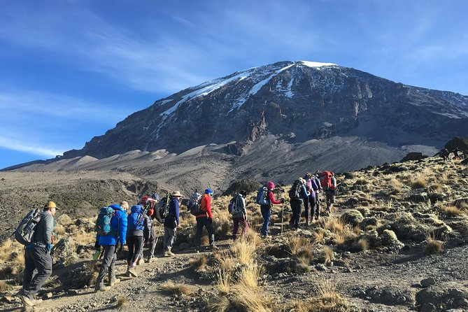 7 Days Climb Kilimanjaro Machame Route World Free Standing Mountain