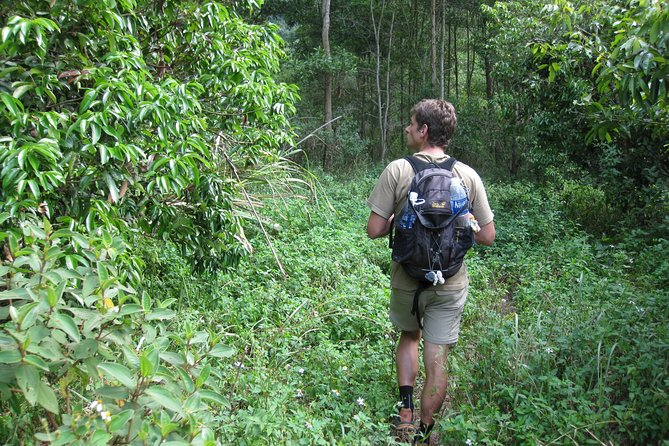 Full day hikking in Jungle of Cat Ba National park photo 31